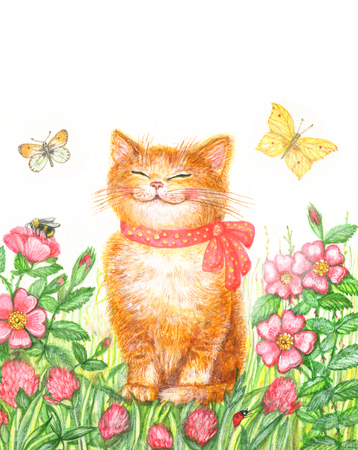 Watercolor drawing funny kitten on a floral background with butterflies Imagens