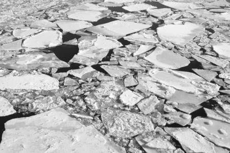 Photo of white ice floes against the background of dark water
