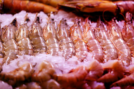 Macro photo of fresh bright shrimps in the ice on a shop window