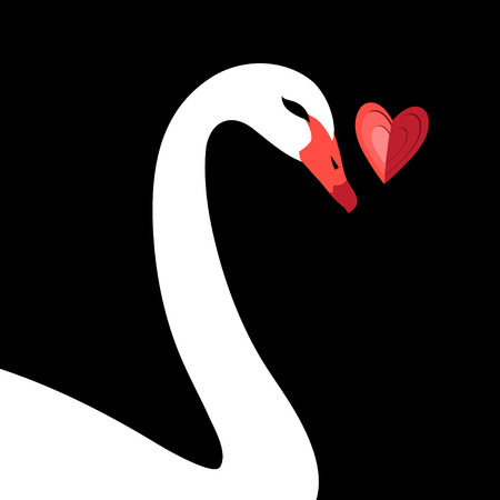 Bright valentine greeting card with white swan and heart on black background
