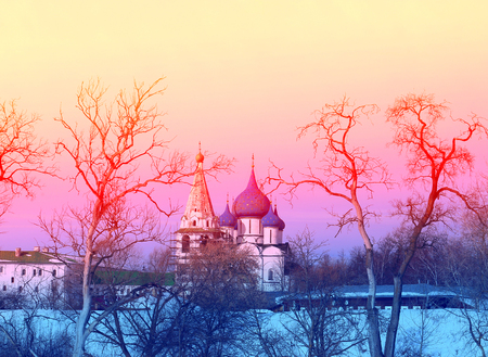Photo landscape Suzdal Kremlin Christmas Cathedral in the background with trees in winter 免版税图像
