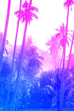 Illustration of bright colored tropical unusual palm trees. Dream Island.
