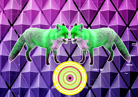 Bright photo poster with foxes on an abstract geometric background with unusual colors