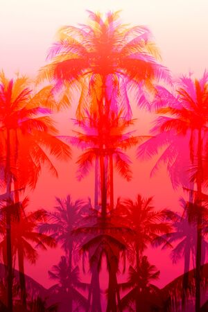 Photo background of exotic beautiful palm trees