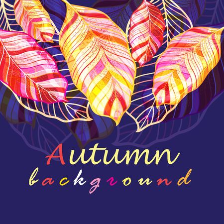 Autumn vector background with colored beautiful leaves against a dark background. Template for design of a poster or business card, web page.
