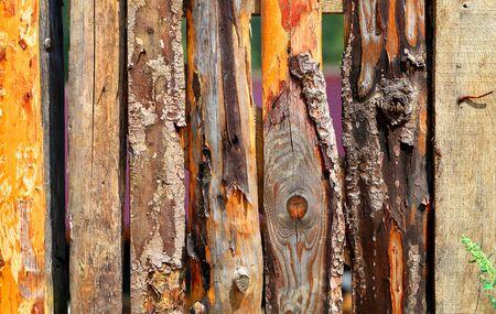 Old macro photo of beautiful vintage fence wood