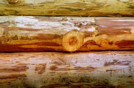 Photo background old log house village in Russian park. Sample wooden background for design.