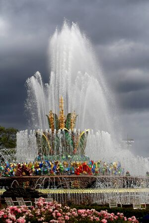 Beautiful photo of the golden fountain Stone Flower 写真素材