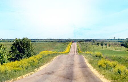 Photo of a long road among fields and flowers in the summer.