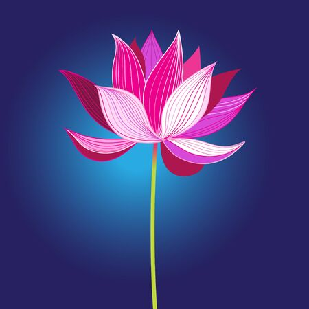 Beautiful pink vector lotus flower