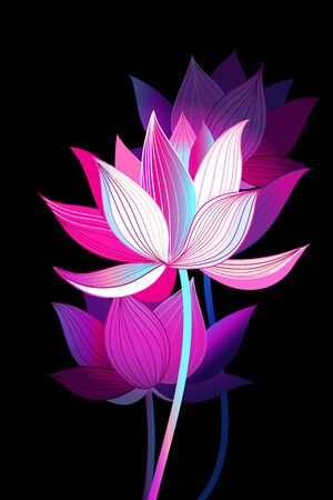 Beautiful natural illustration with pink lotuses on a dark background.