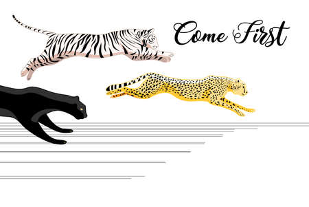 Vector running Panther, tiger and leopard in victory on white background