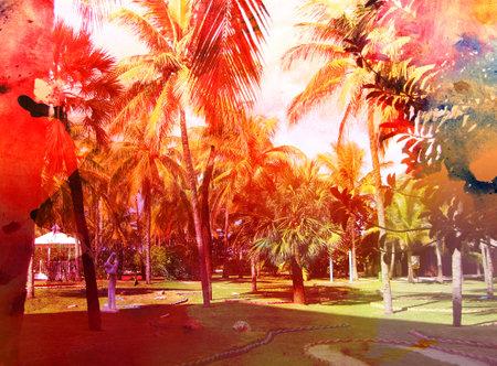 Retro photo beautiful color tropical palm trees
