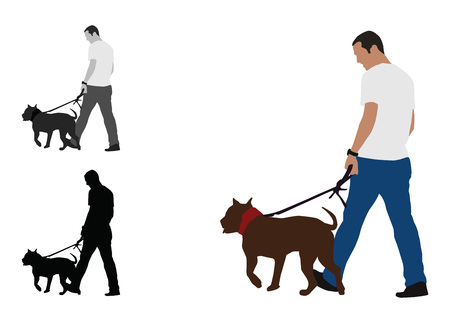 Realistic flat colored illustration of a man walks a staffordshire bull terrier dog
