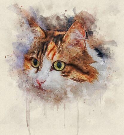 Watercolor Portrait illustration of a calico cat