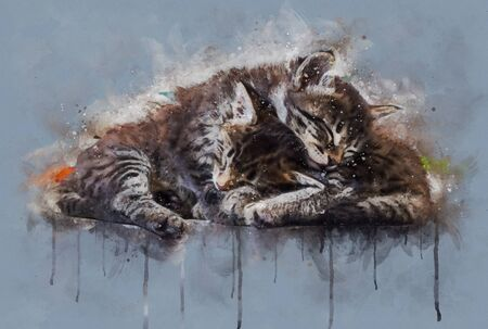 Watercolor illustration, Two little tabby cats sleeping together.