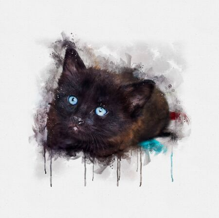 Watercolor illustration, Portrait of a little black cat with blue eyes. Stok Fotoğraf