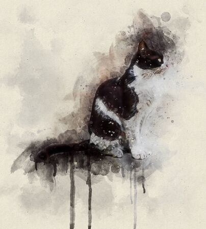 Watercolor illustration, Profile of a dirty black and white colored stray cat sitting