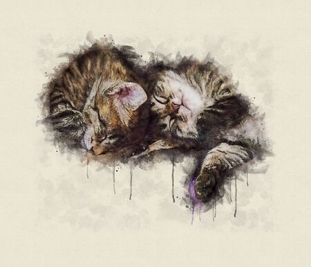 Watercolor illustration, Group of little tabby cats sleeping together. Stok Fotoğraf