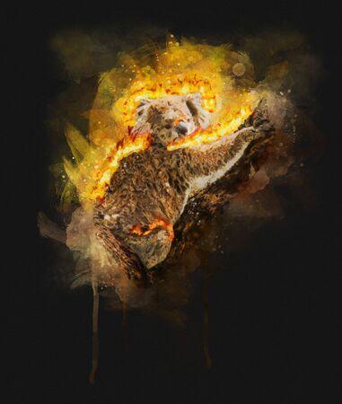 Burning Koala Illustration on dark background