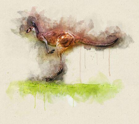 Ilustración acuarela de un canguro corriendo