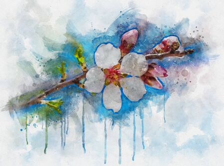 Watercolor illustration of a beautiful cherry blossom sakura in springtime over blue sky