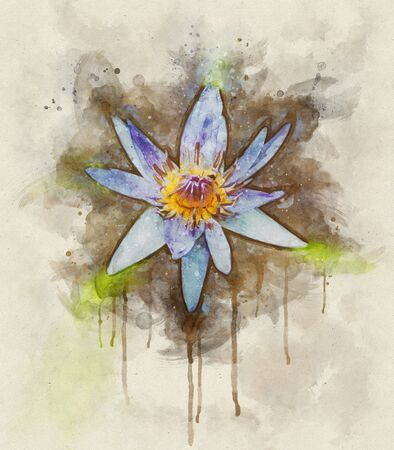 Watercolor illustration of a purple lotus flower and leaves on the water surface Stok Fotoğraf