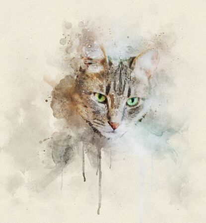 Watercolor portrait illustration of a grey domestic cat with green eyes Stok Fotoğraf