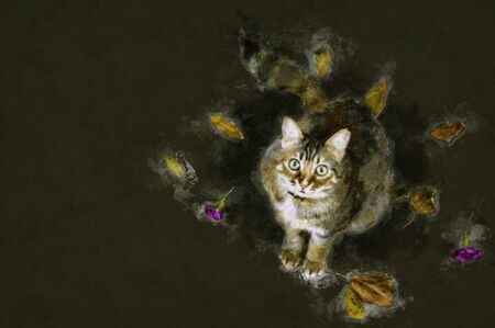 Watercolor illustration of a orange tabby cat looking up with green eyes and leaves around on dark background