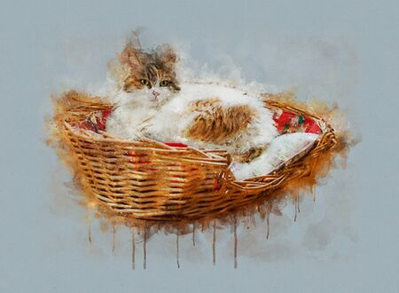 Watercolor illustration of a brown white cat lying on basket with pillow