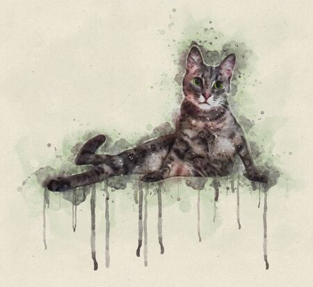 Watercolor illustration of a grey cat lying and looking towards Stok Fotoğraf