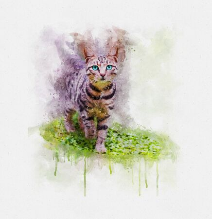 Watercolor illustration of a cat walking on green grass on light background