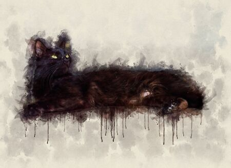 Watercolor illustration of a beautiful young black cat with green eyes lying on the floor Stok Fotoğraf