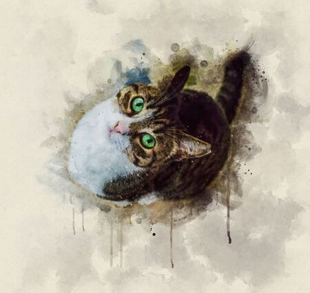 Watercolor illustration of a brown and white cat looking up with green eyes