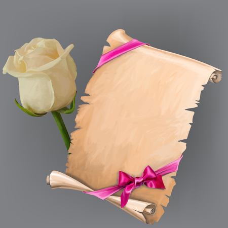 aciculum: Vector white rose and scroll with ribbon