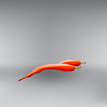 red pepper: hot red pepper pod vector Illustration