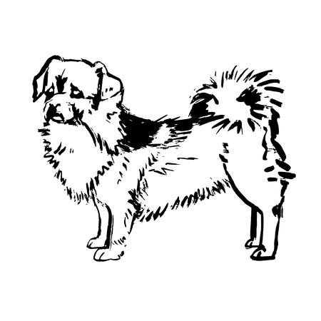 vecto de perro Ilustración de vector