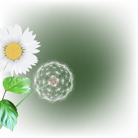 posterity: white dandelion seeds, nature, vector
