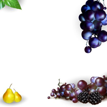 grapes, vector background for advertising