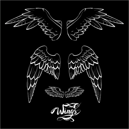 two birds: angel wings vector, lettering, drawing Stock Photo