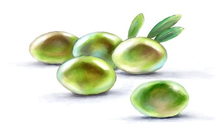 kelly: olive green, fruits and leaves, drawing