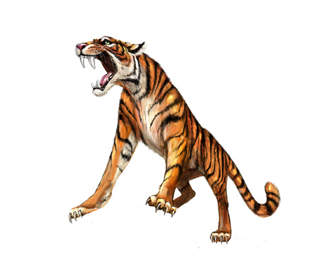 Tiger roars, picture Stock Photo