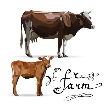 Cow Calf brown, vector Stock Photo