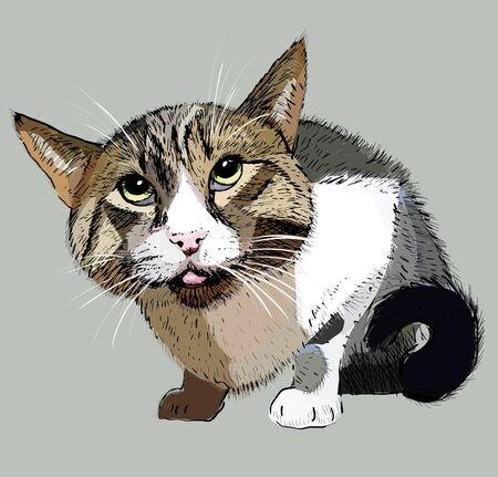 cat illustration print vector gray