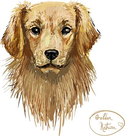 golden retriever, hungry, vector character icon set