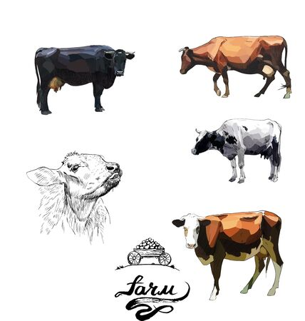 Cow illustration vector realistic farm animals