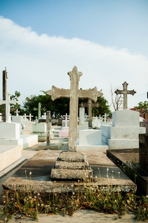 Parts of the cemetery photo
