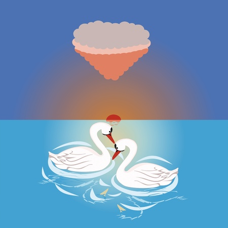 Beloved swans on a like or sea at sunrise Stock Vector - 16771296