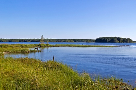 backwater: Quiet backwater on White Sea-Baltic Canal in Karelia, North Russia