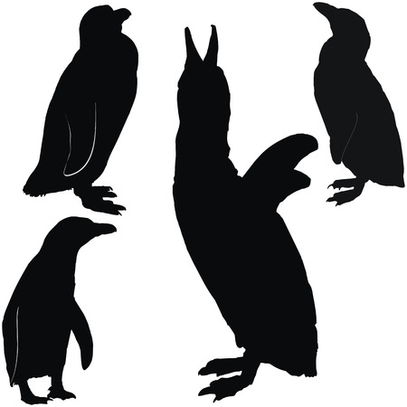 antarctic: Posing penguins, set of black silhouettes Illustration
